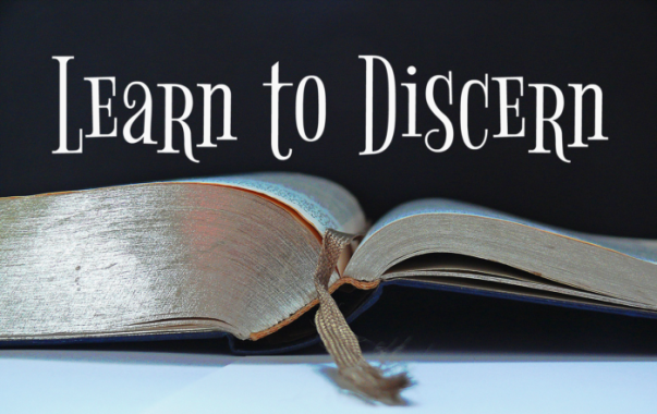 Learn-to-Discern
