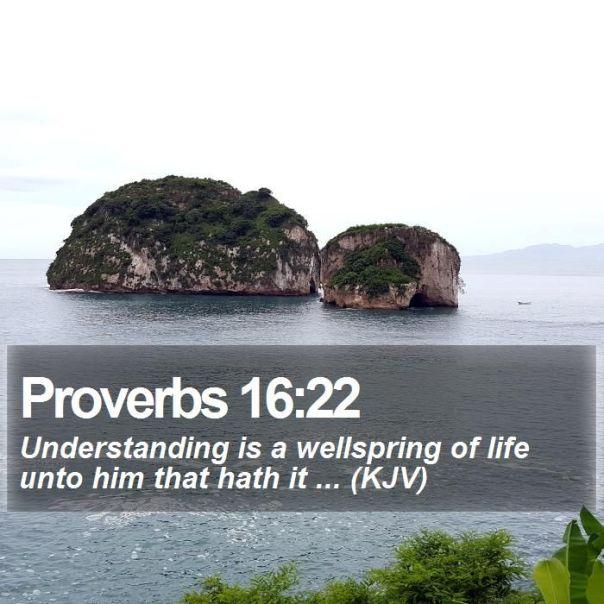 Proverbs 16 22