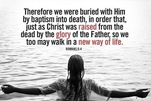 Romans 6 4