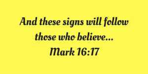 signs-will-follow